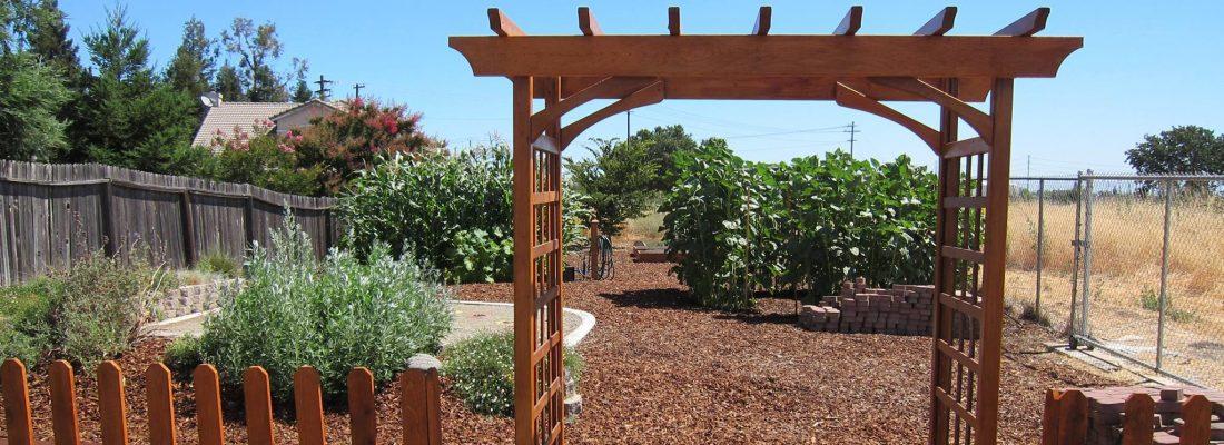 Elk Grove Community Garden